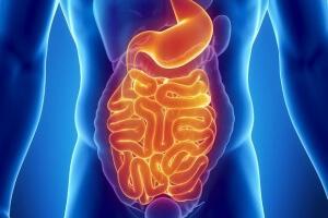 Диеты при ленивом кишечнике
