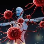 Иммунная система: особенности, принцип работы, способы восстановления
