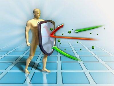 Значимость защитной системы в нашем организме