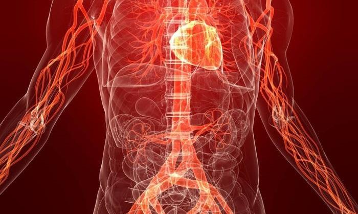 Что происходит с организмом человека после отказа от курения