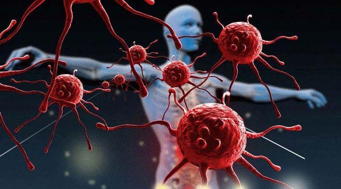 Как укрепить иммунную систему организма