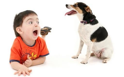 Какую собаку завести для ребёнка?