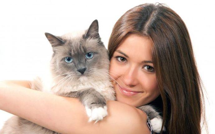 Кошки лечат психические расстройства