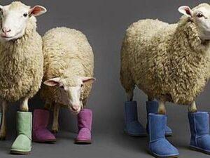 Сапожки угги из овечей шкуры